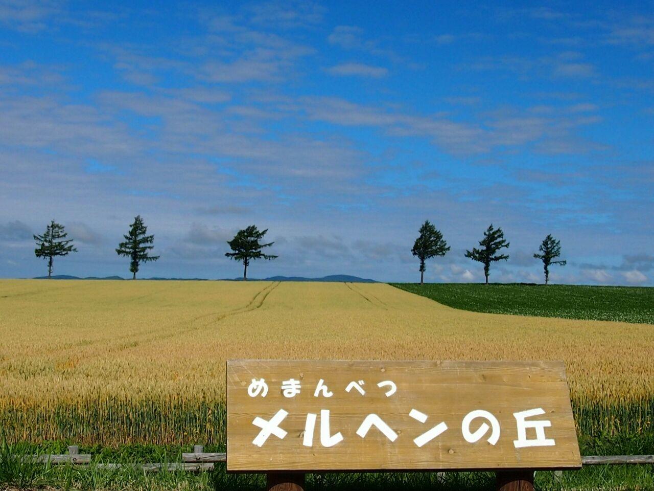 天気 羽幌 町 羽幌のアメダス
