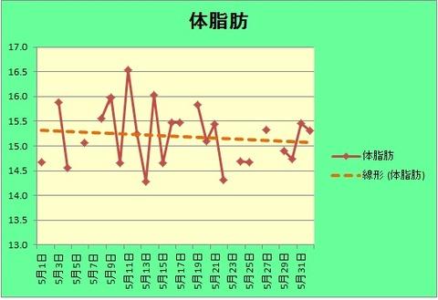 体脂肪グラフ(5.31)