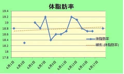 18体脂肪率グラフ