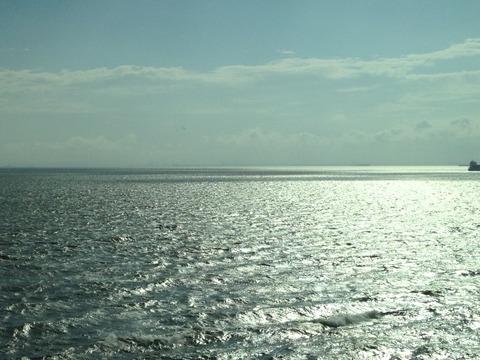 海ボタル1