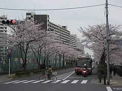 IMG_1325