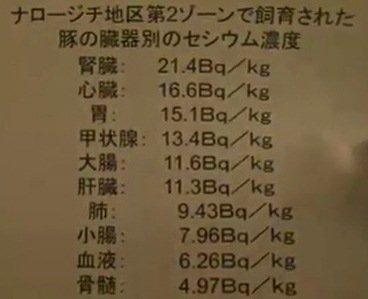 11月15日 低線量被曝リスク会合 木村真三氏