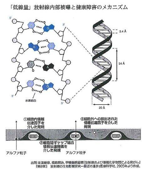 松井英介1