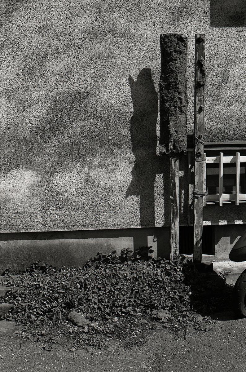 小林紀晴のエッセイ「TOKYO NETURE PHOTOGRAPHY」第11回