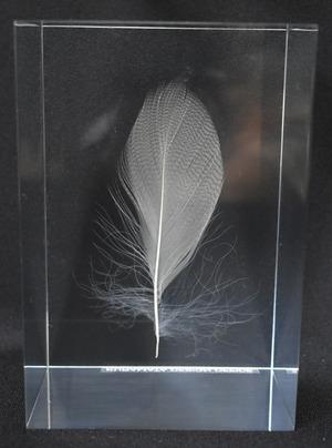 kuramata4_feather_w5