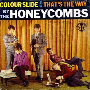 02Honeycombs-colorslide