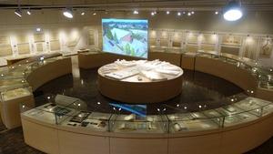 5_exhibition