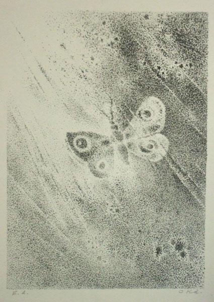 岡鹿之助の画像 p1_17