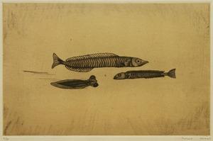 �-9 1958 三匹の小魚