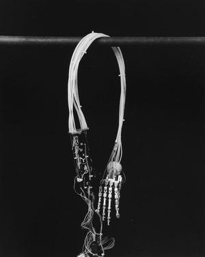 肉体と鉄棒 14-1