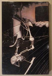 図19-3 奈良原一高『大ガラス』