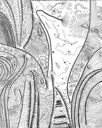 深野一朗のエッセイ〜草間彌生と瑛九1〜永遠に進化する画家