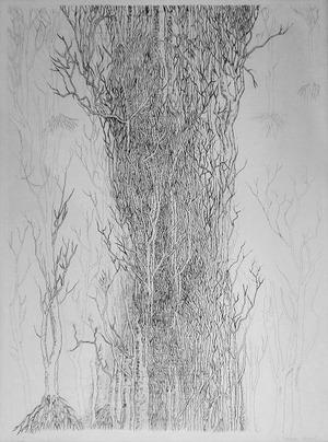 針生一郎「現代日本版画家群像」 第4回 駒井哲郎と浜田知明