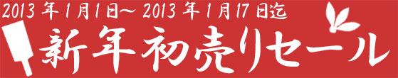2012123105