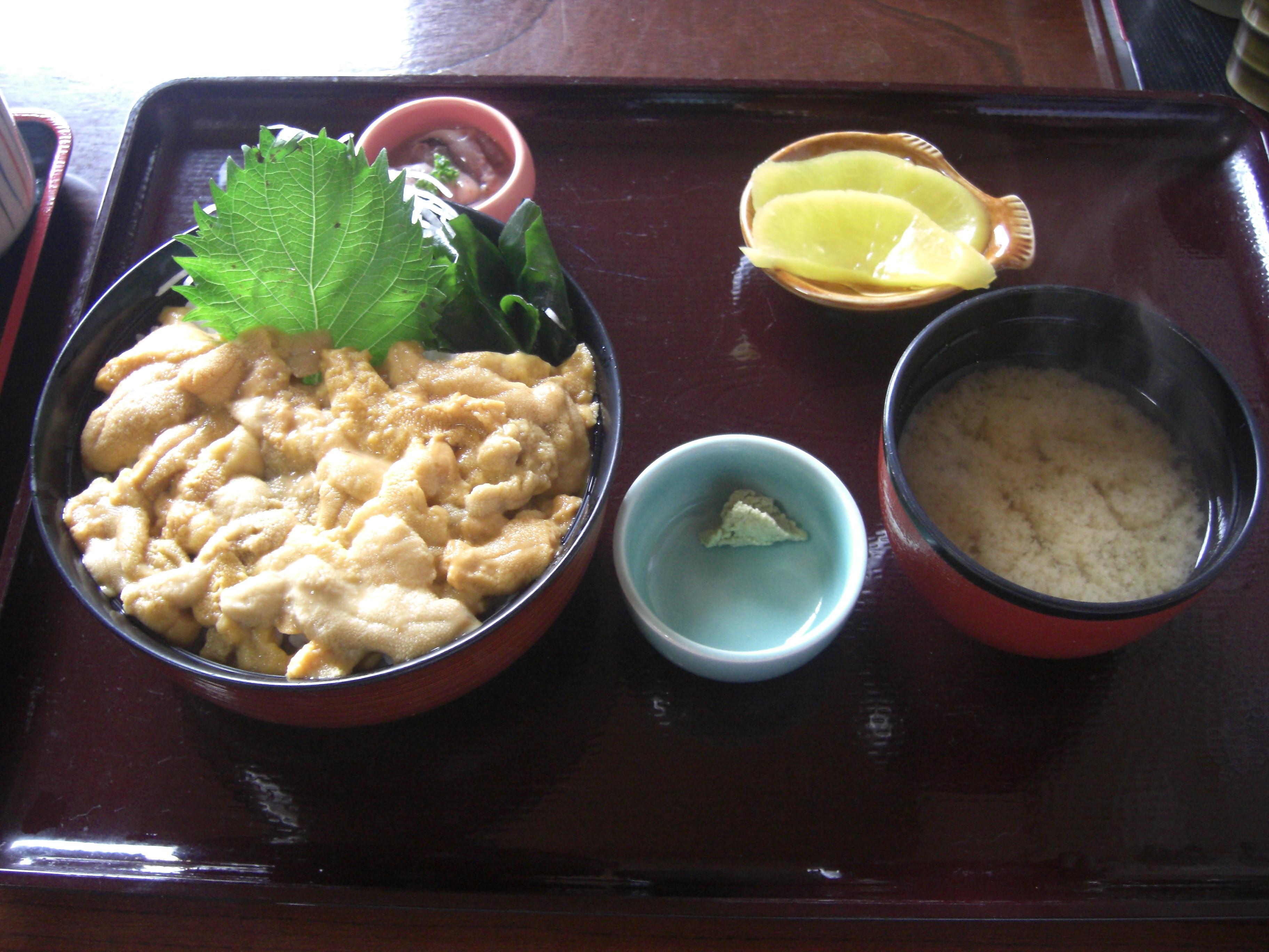 北海道2009 006