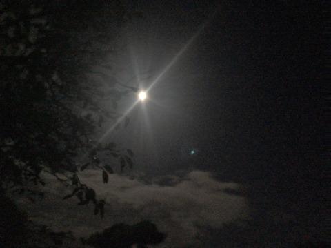 月 (2)