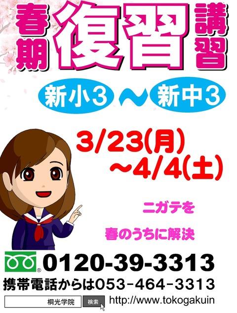 Microsoft Word - 天竜4