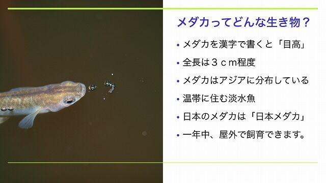 スクリーンショット 2020-08-09 21.16.22