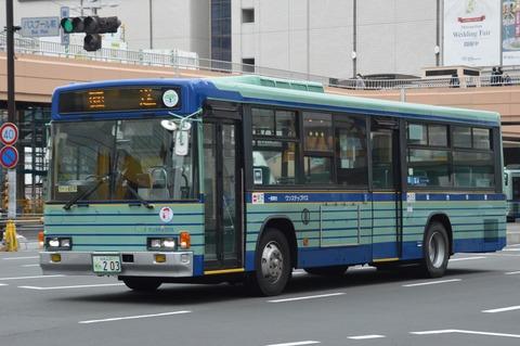 DSC_0499 (2)