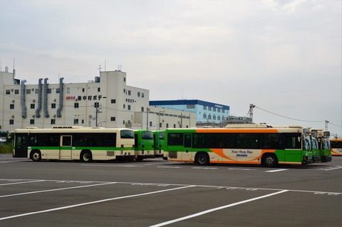 DSC_0539 (2)