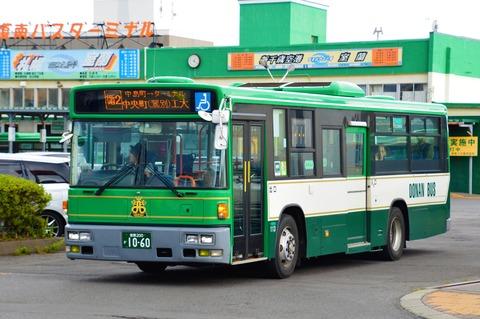 DSC_0247 (2)