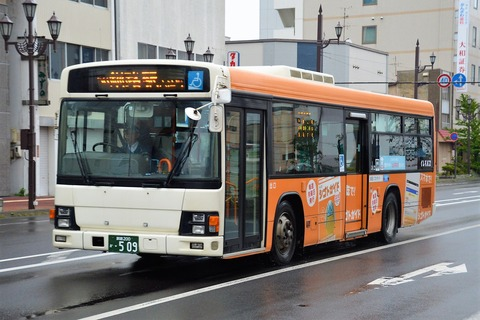SSC_1230 (2)