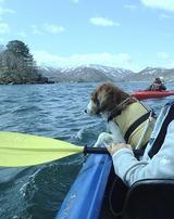 カヌー体験1