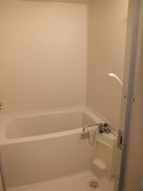 グリーンプラザセブン401 浴室