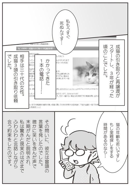 tcg-blog53(1)