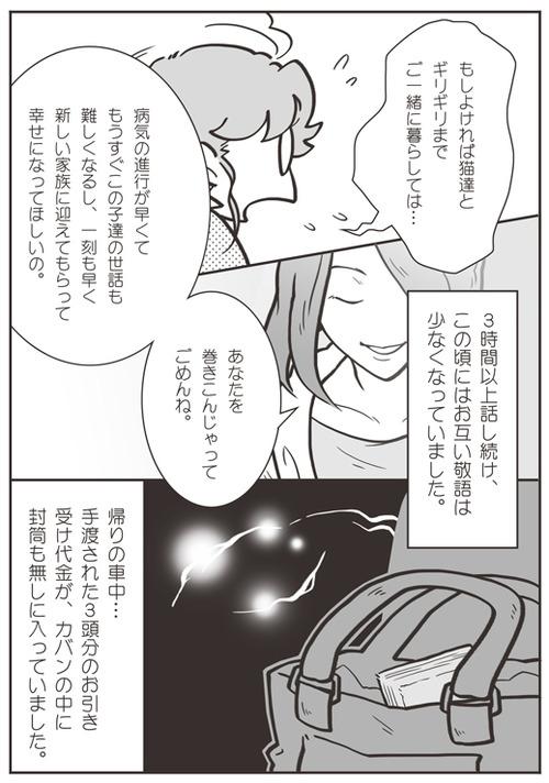 tcg-blog53(4)