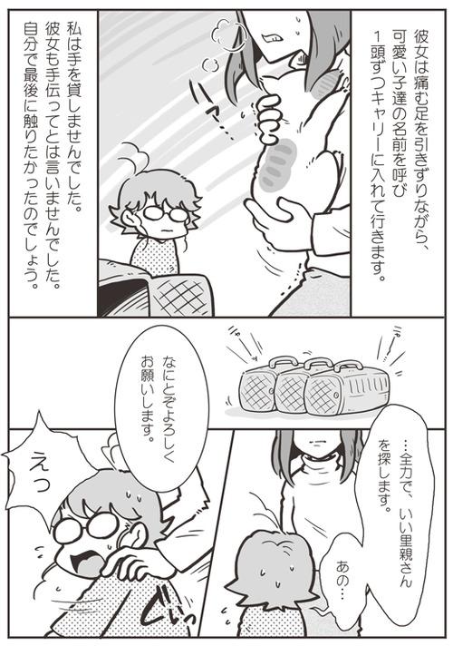 tcg-blog53(6)