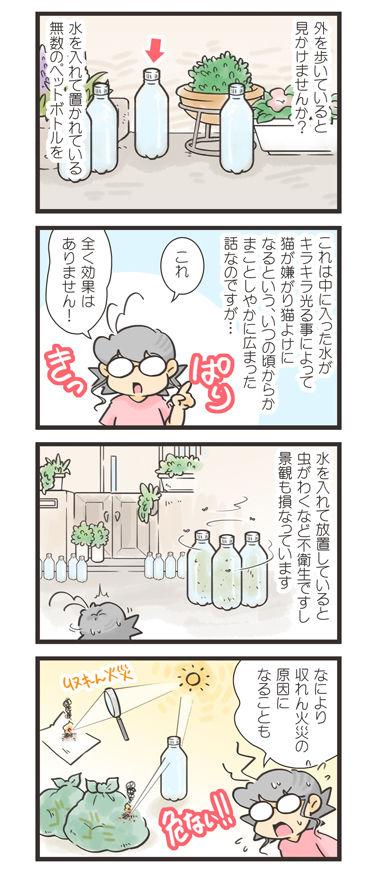 tcg-blog599