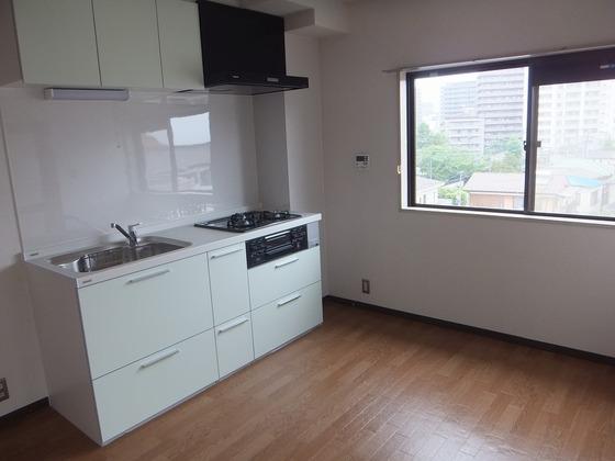 グリーンプラザセブン401 キッチン