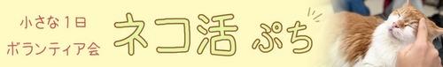nekokatu-puchi-banner