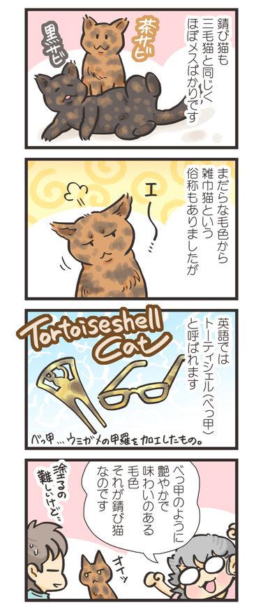 tcg-blog193