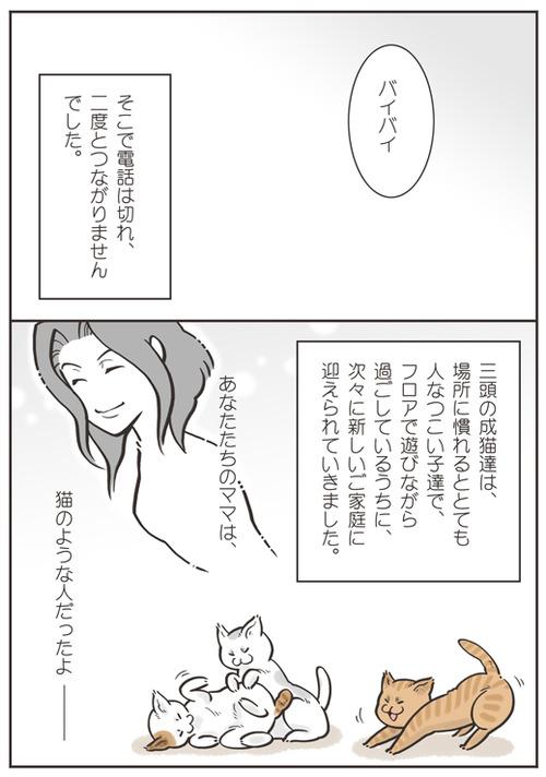 tcg-blog53(10)