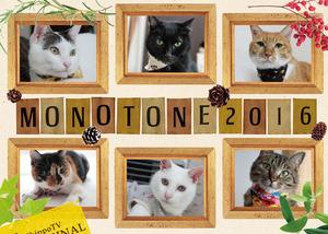 monotone1