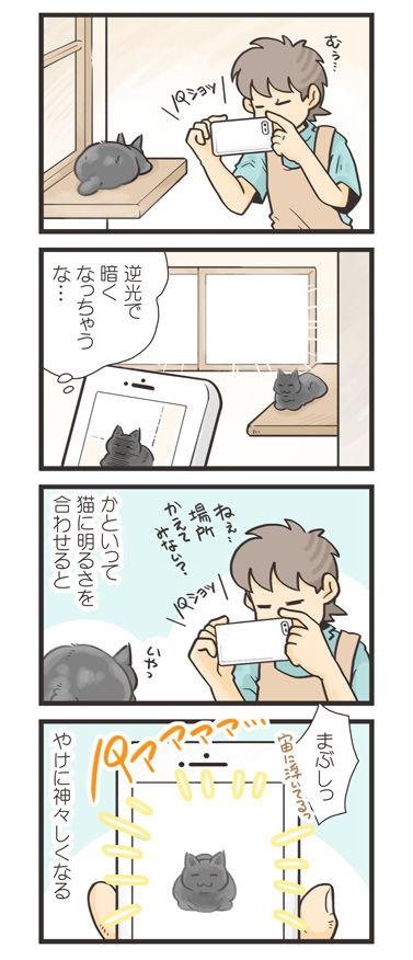 tcg-blog468