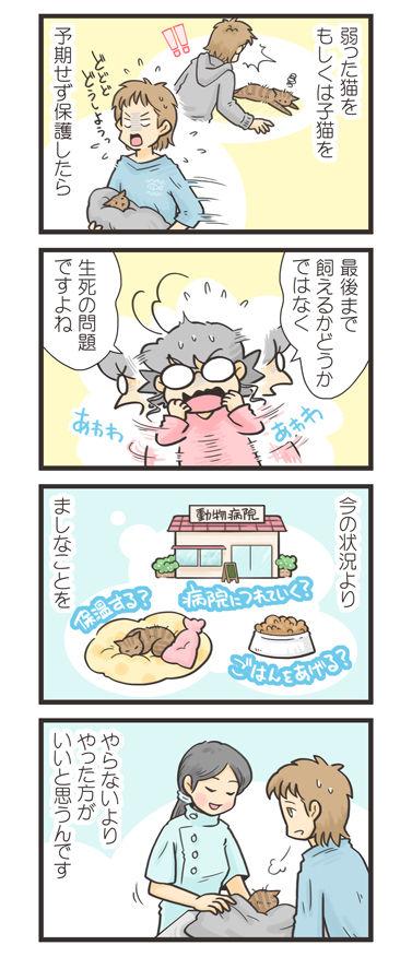 tcg-blog467