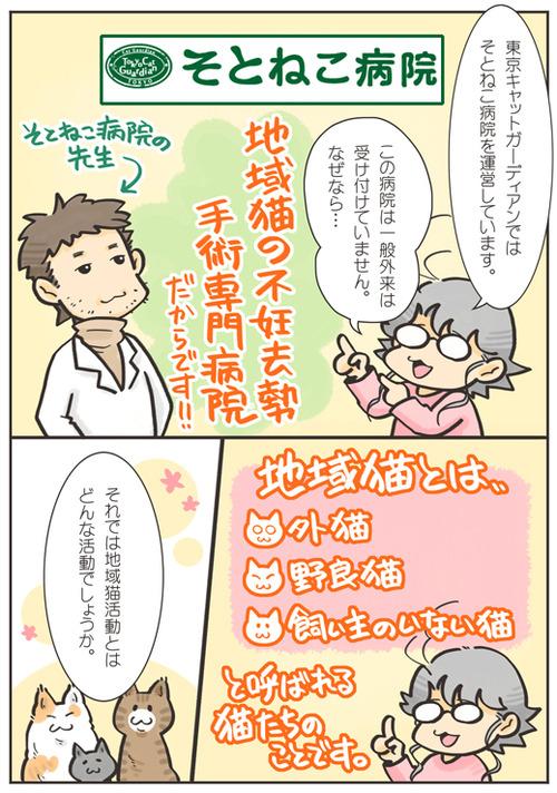 tcg-blog76(1)