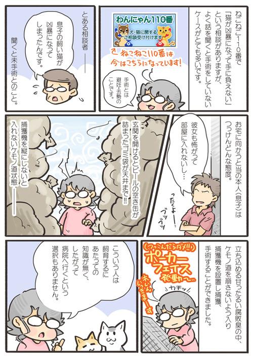 tcg-blog145