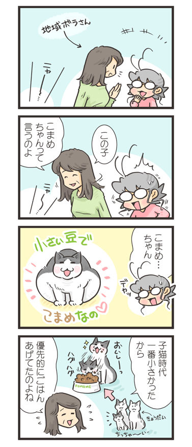 tcg-blog461