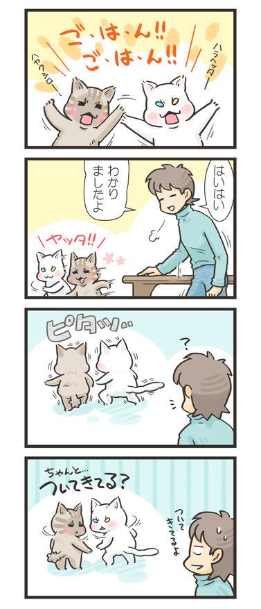 tcg-blog464