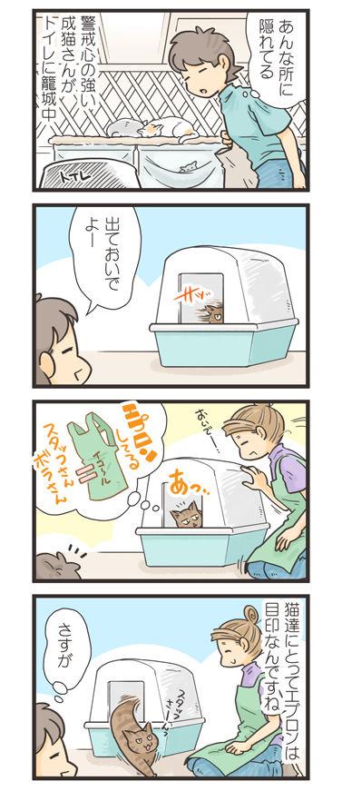 tcg-blog597