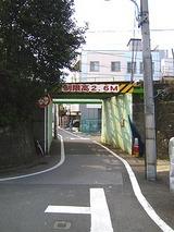 4b77365f.jpg