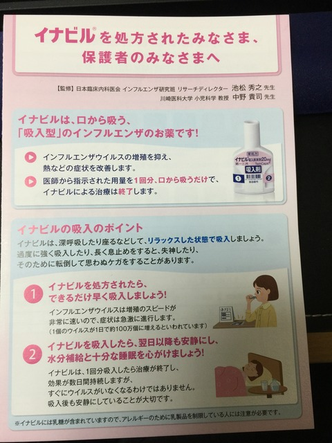 inabiru_leaflet