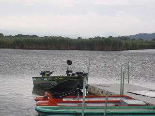 P6030013