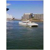 sydney cruise boat