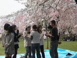 hanami group