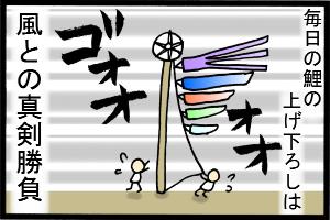 あぁ、トマコの生きる道-風になびく鯉は数十キロの重さ…!!